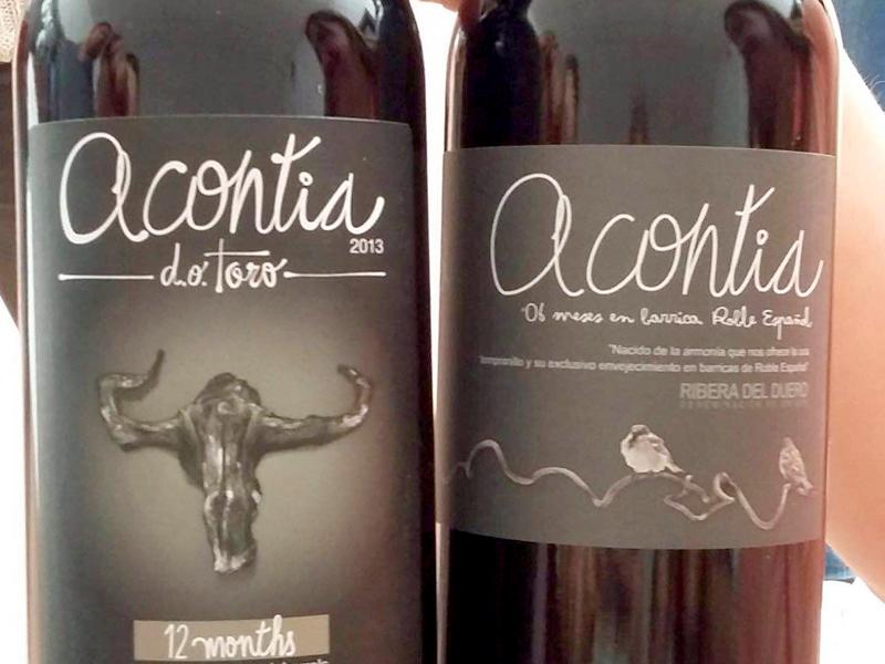 Bodegas Acontia de Castilla y León